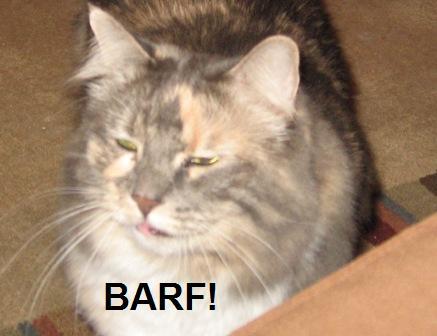 kitty-kitty-barf1