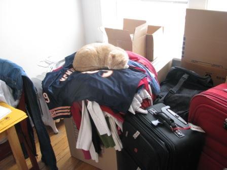 simba-packing
